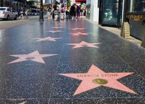 hollywoodboulevardnew_7495